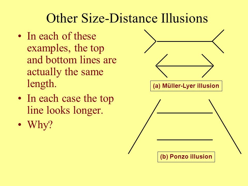 Other Size-Distance Illusions In each of these examples, the top and bottom lines are actually the same length. In each case the top line looks longer