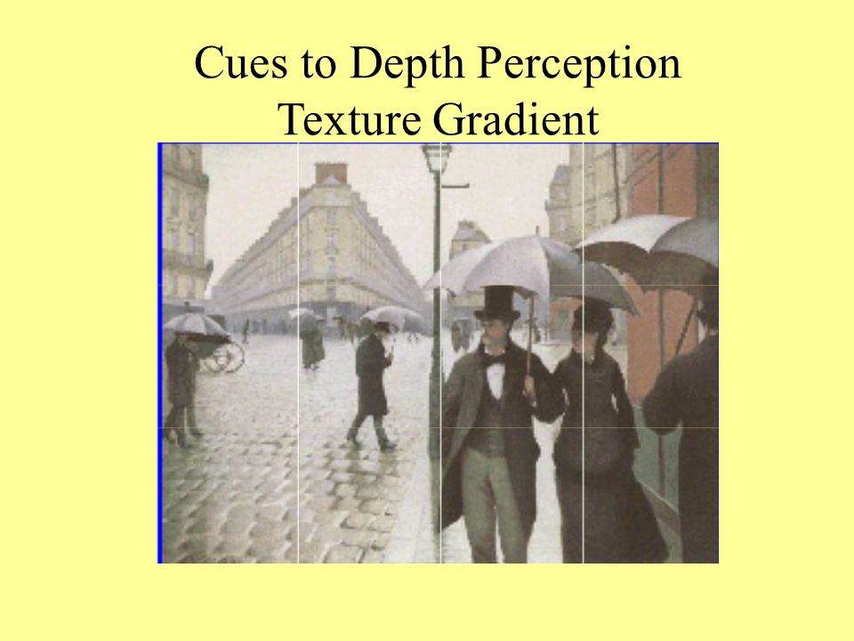 Cues to Depth Perception Texture Gradient