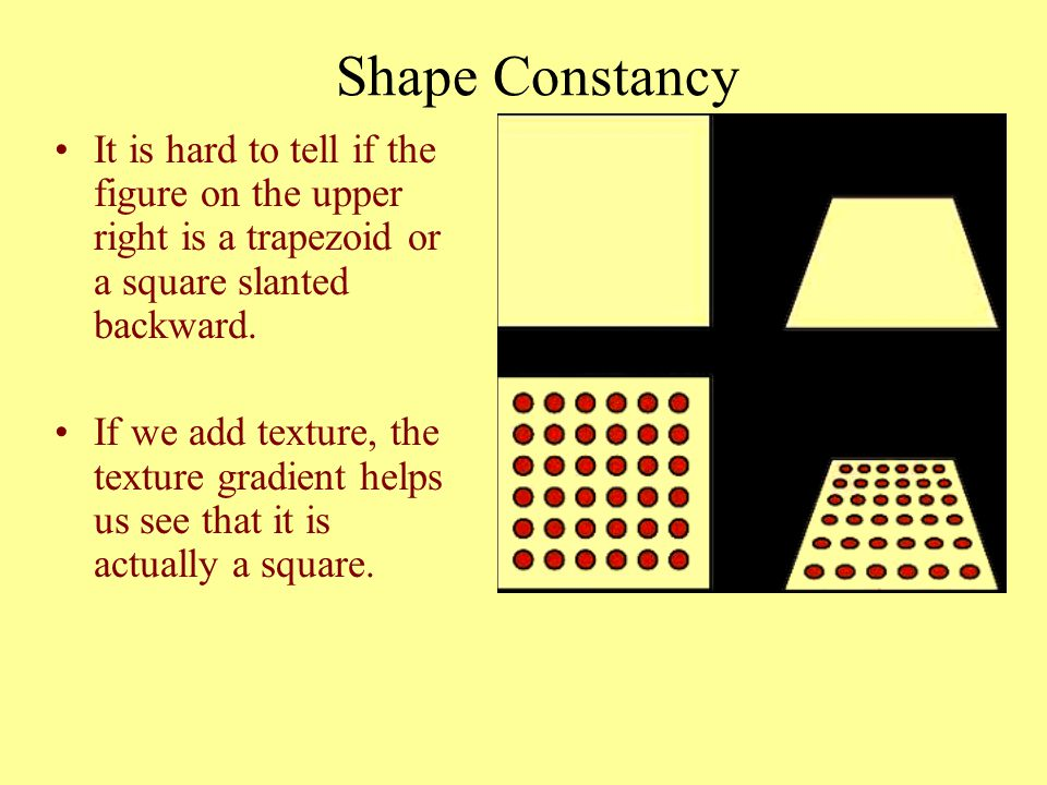 Shape Constancy It is hard to tell if the figure on the upper right is a trapezoid or a square slanted backward. If we add texture, the texture gradie