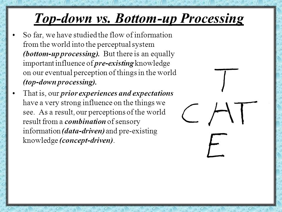 Top-down vs. Bottom-up Processing So far, we have studied the flow of information from the world into the perceptual system (bottom-up processing). Bu