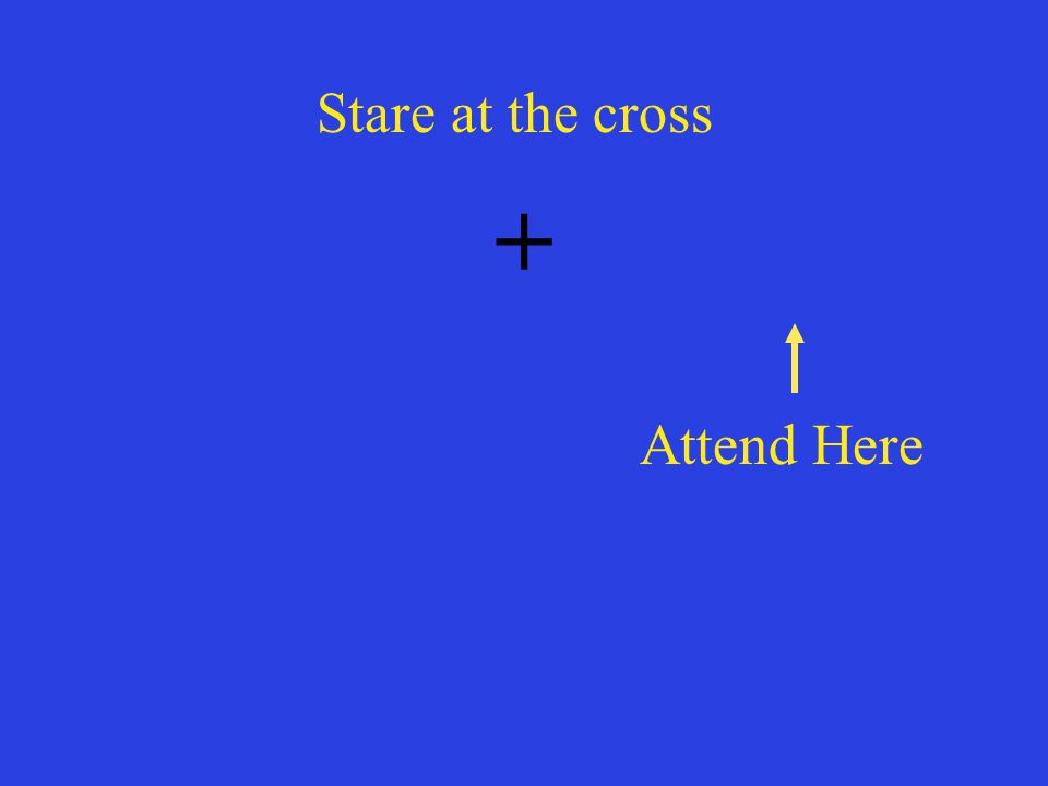 + Attend Here Stare at the cross