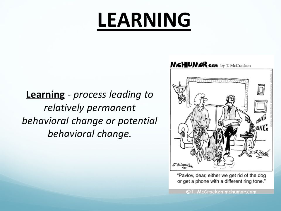 Classical Conditioning Associations are made between a natural stimulus and a learned, neutral stimulus.