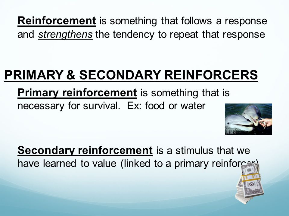Reinforcement is something that follows a response and strengthens the tendency to repeat that response PRIMARY & SECONDARY REINFORCERS Primary reinfo