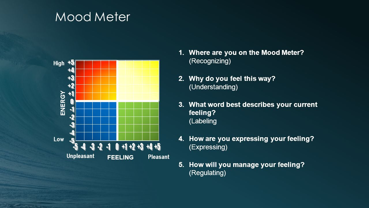 Mood Meter Pleasant Unpleasant High FEELING Low ENERGY 1.Where are you on the Mood Meter.