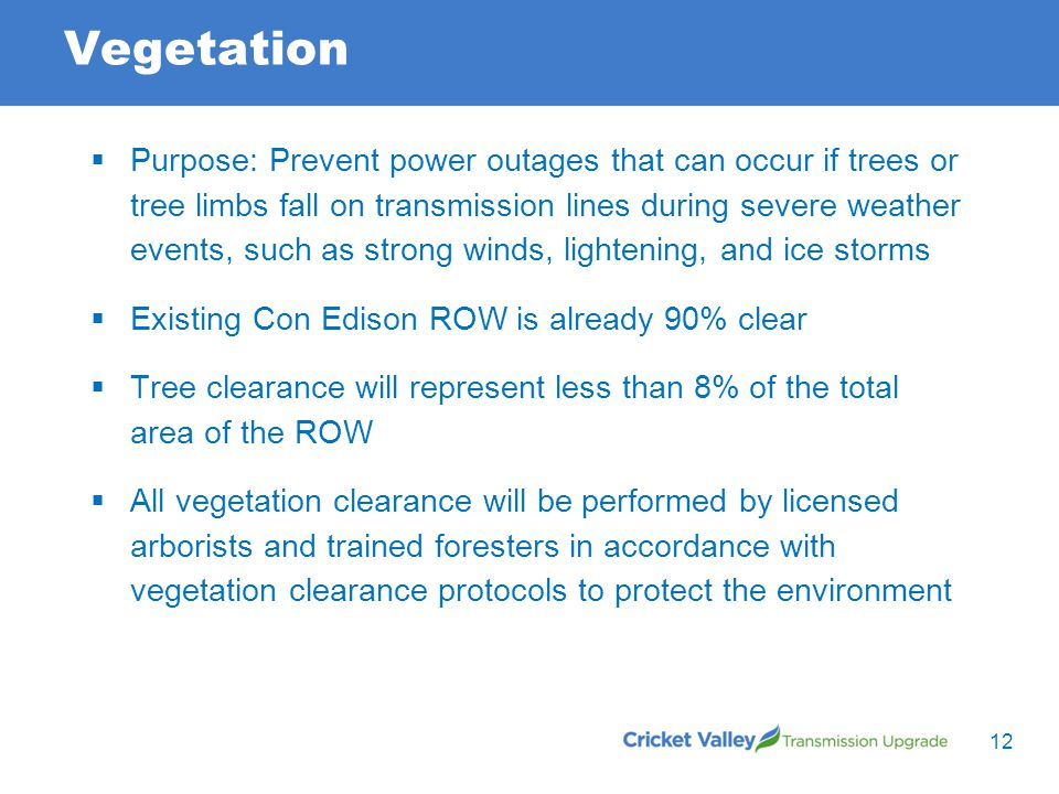 Vegetation 12  Purpose: Prevent power outages that can occur if trees or tree limbs fall on transmission lines during severe weather events, such as strong winds, lightening, and ice storms  Existing Con Edison ROW is already 90% clear  Tree clearance will represent less than 8% of the total area of the ROW  All vegetation clearance will be performed by licensed arborists and trained foresters in accordance with vegetation clearance protocols to protect the environment