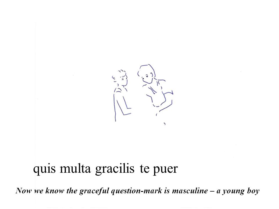 quis multa gracilis te puer Now we know the graceful question-mark is masculine – a young boy
