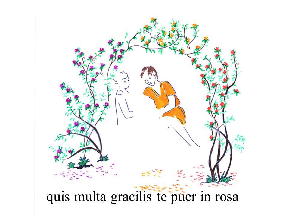 quis multa gracilis te puer in rosa