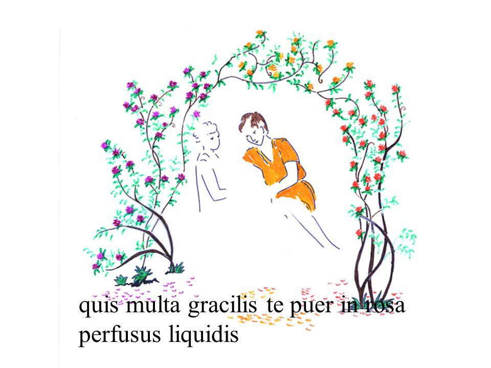 quis multa gracilis te puer in rosa perfusus liquidis