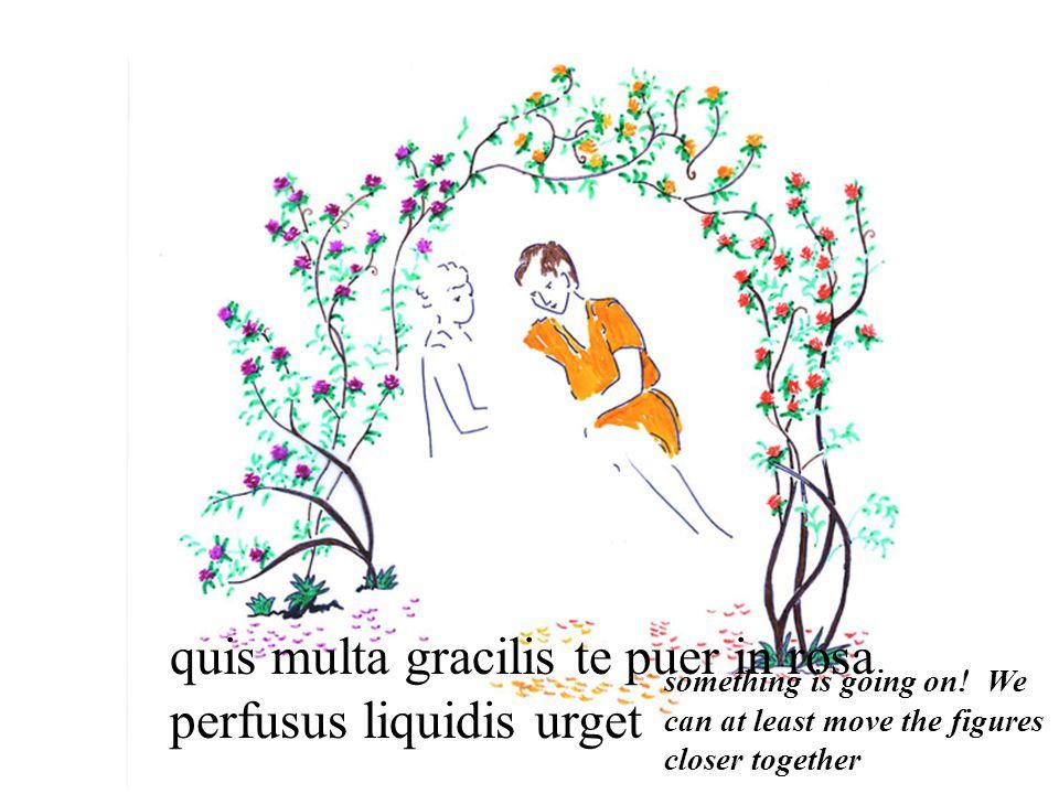 quis multa gracilis te puer in rosa perfusus liquidis urget something is going on.