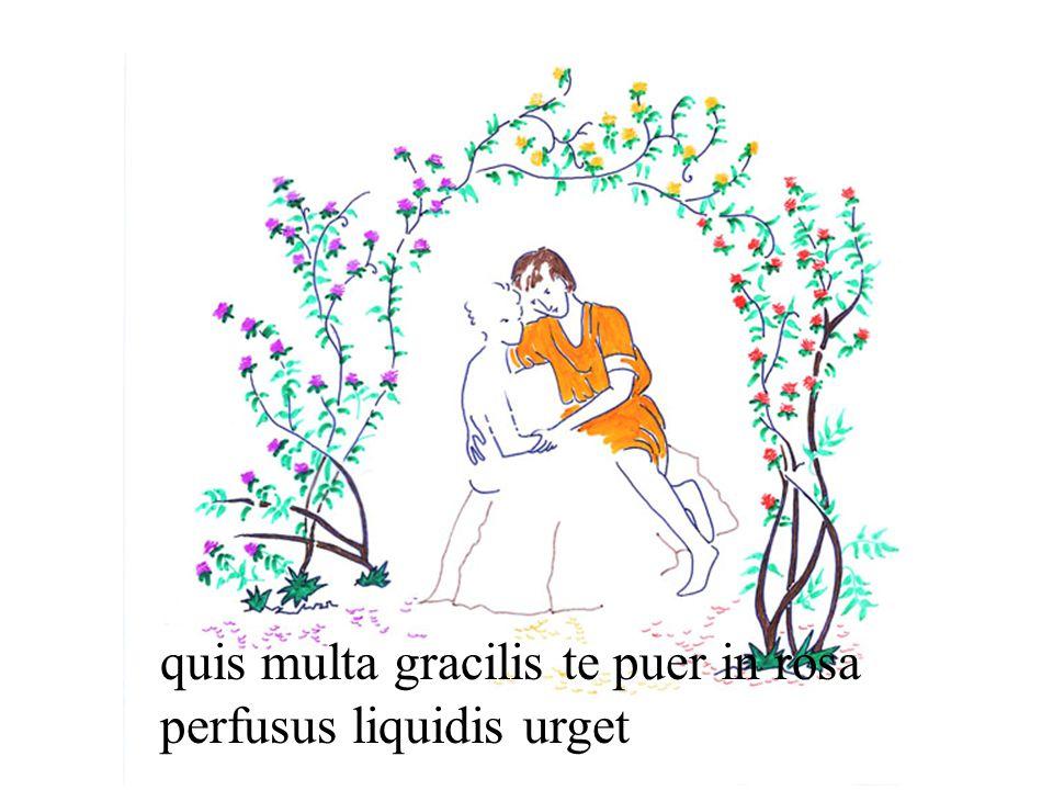 quis multa gracilis te puer in rosa perfusus liquidis urget
