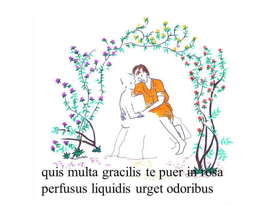 quis multa gracilis te puer in rosa perfusus liquidis urget odoribus