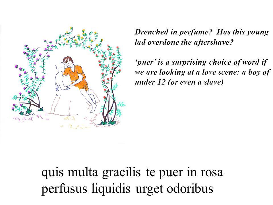 quis multa gracilis te puer in rosa perfusus liquidis urget odoribus Drenched in perfume.