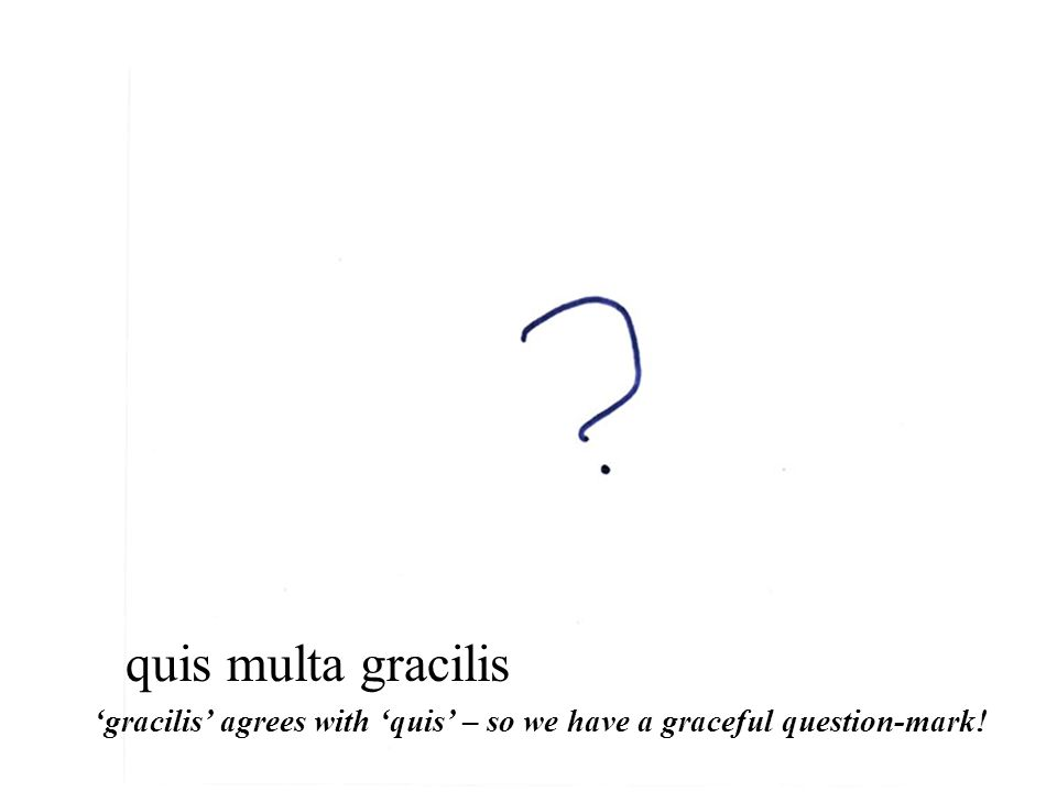 quis multa gracilis 'gracilis' agrees with 'quis' – so we have a graceful question-mark!
