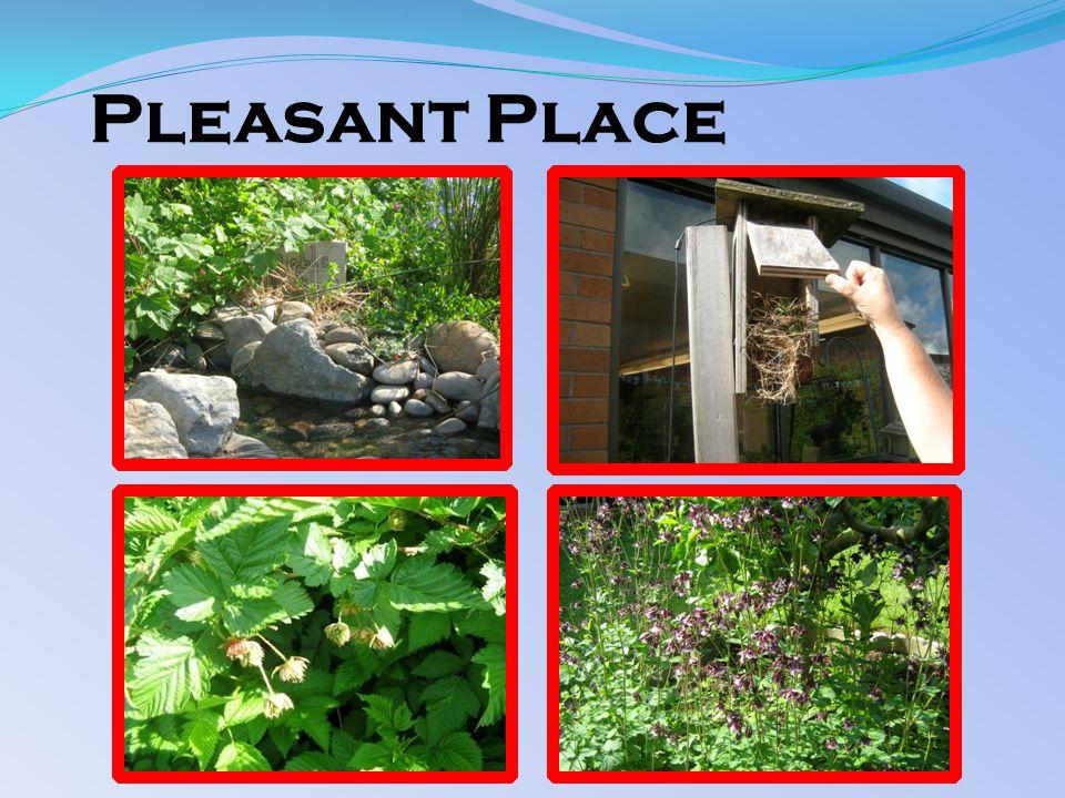 Pleasant Place
