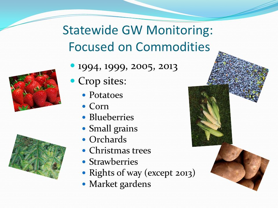 Statewide GW Monitoring: Focused on Commodities 1994, 1999, 2005, 2013 Crop sites: Potatoes Corn Blueberries Small grains Orchards Christmas trees Strawberries Rights of way (except 2013) Market gardens
