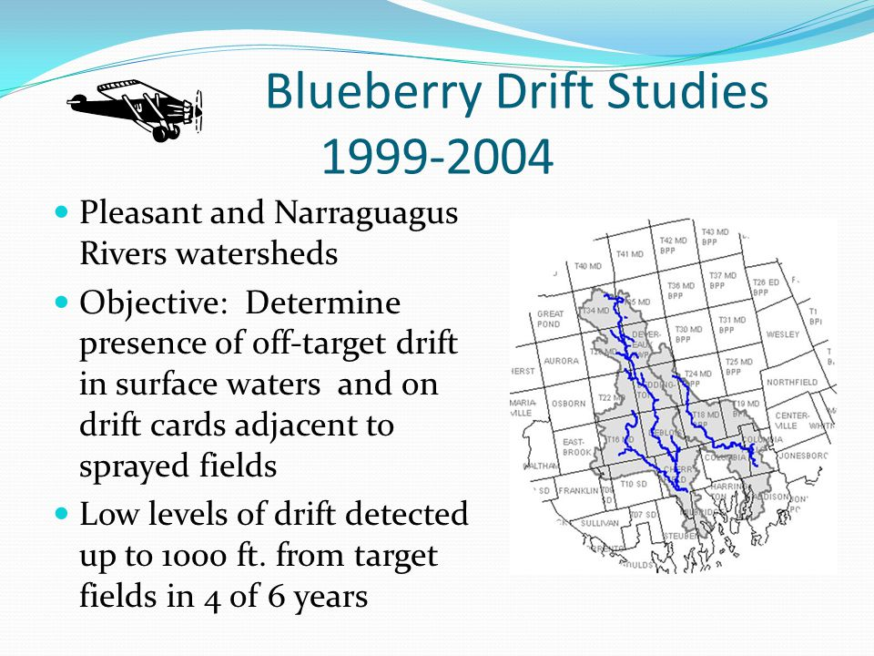 Blueberry Drift Studies 1999-2004 Pleasant and Narraguagus Rivers watersheds Objective: Determine presence of off-target drift in surface waters and on drift cards adjacent to sprayed fields Low levels of drift detected up to 1000 ft.