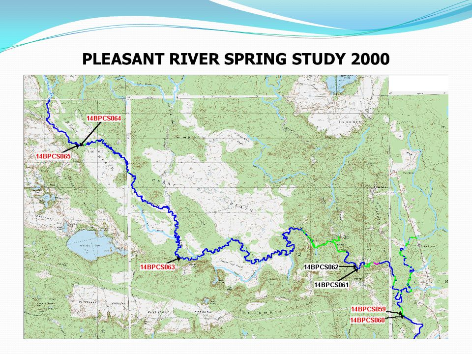 PLEASANT RIVER SPRING STUDY 2000