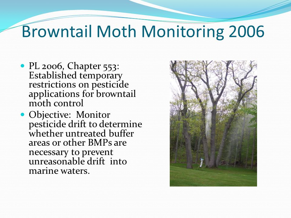 Browntail Moth Monitoring 2006 PL 2006, Chapter 553: Established temporary restrictions on pesticide applications for browntail moth control Objective