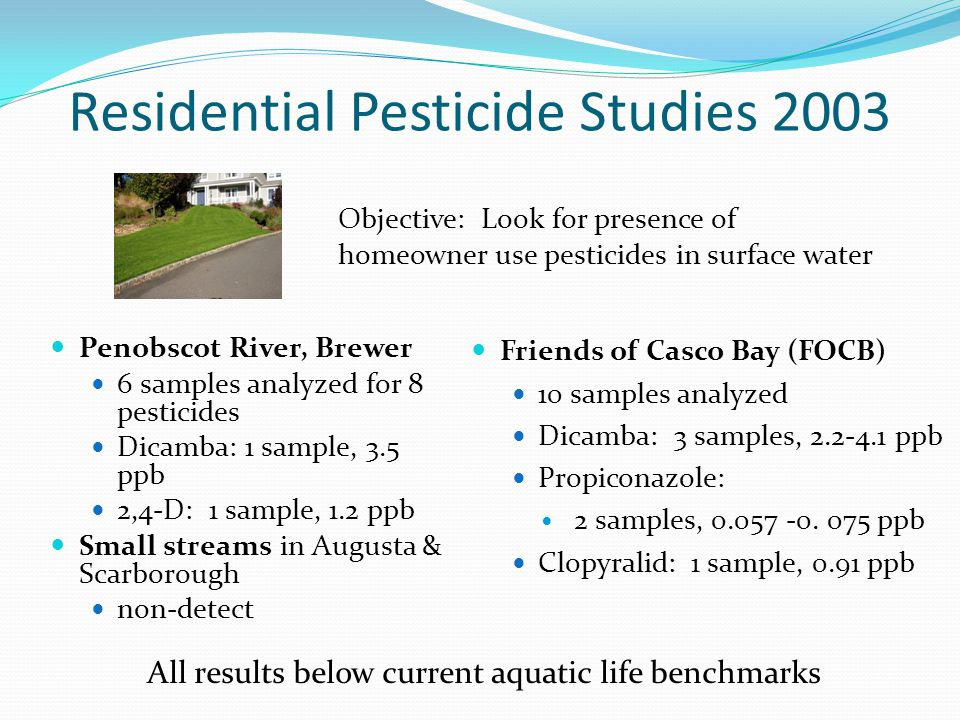 Residential Pesticide Studies 2003 Penobscot River, Brewer 6 samples analyzed for 8 pesticides Dicamba: 1 sample, 3.5 ppb 2,4-D: 1 sample, 1.2 ppb Small streams in Augusta & Scarborough non-detect Friends of Casco Bay (FOCB) 10 samples analyzed Dicamba: 3 samples, 2.2-4.1 ppb Propiconazole: 2 samples, 0.057 -0.