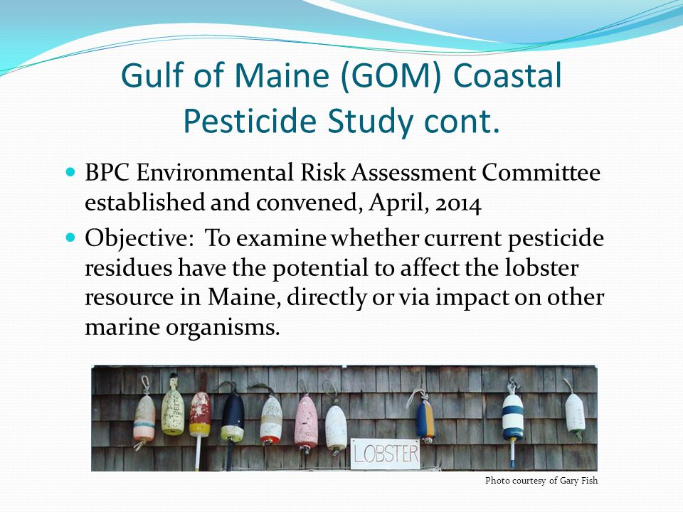 Gulf of Maine (GOM) Coastal Pesticide Study cont. BPC Environmental Risk Assessment Committee established and convened, April, 2014 Objective: To exam