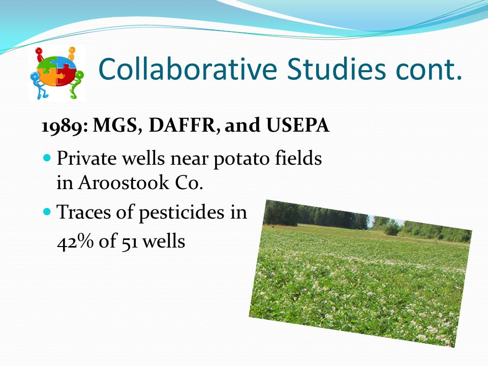 Collaborative Studies cont. 1989: MGS, DAFFR, and USEPA Private wells near potato fields in Aroostook Co. Traces of pesticides in 42% of 51 wells