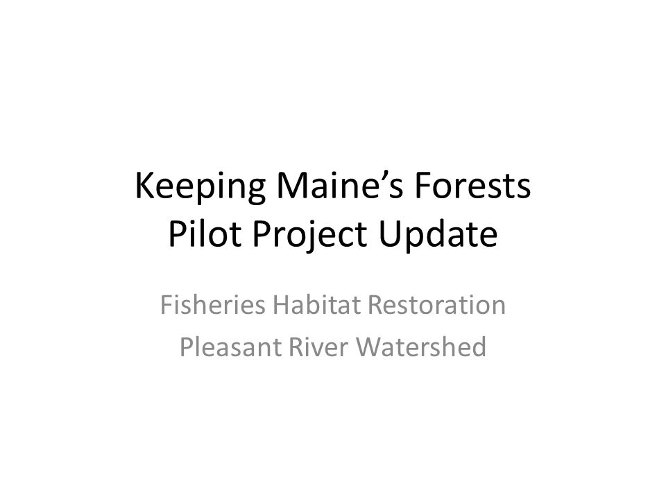 Keeping Maine's Forests Pilot Project Update Fisheries Habitat Restoration Pleasant River Watershed