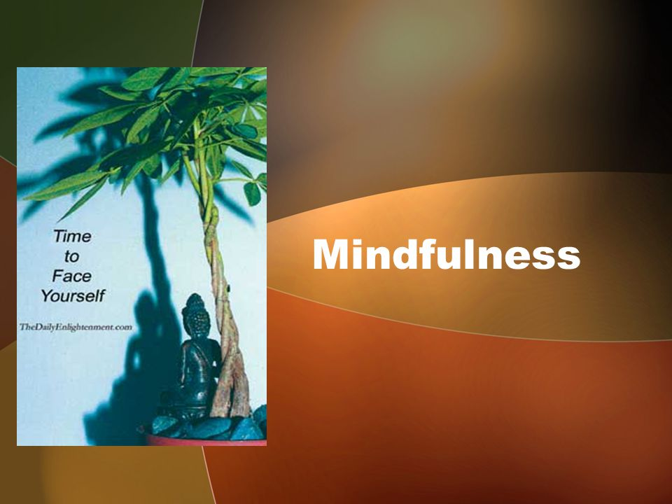 DAY 4 Mindfulness of mental contents / phenomena –its importance … Essence of practice: being aware of variety of mental contents experienced, – making a mental note, –discerning their essential characteristic of impermanence –training the mind not to develop craving/ aversion for these….