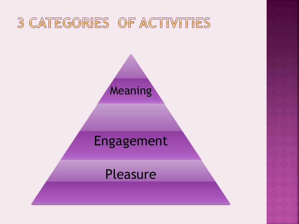 Meaning Engagement Pleasure