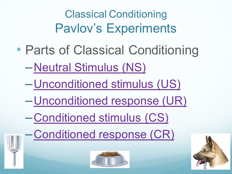 Classical Conditioning Pavlov's Experiments Parts of Classical Conditioning – Neutral Stimulus (NS) Neutral Stimulus (NS) – Unconditioned stimulus (US