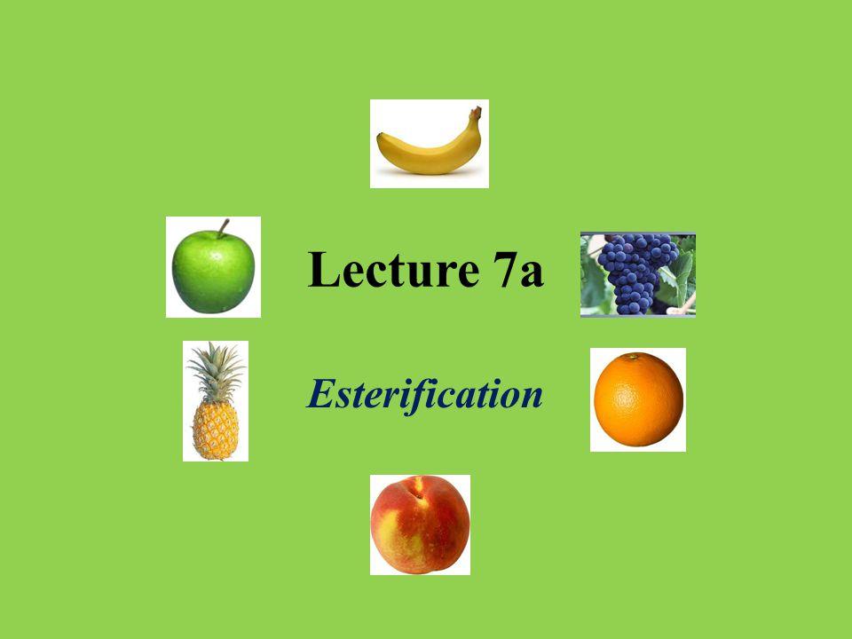 Lecture 7a Esterification