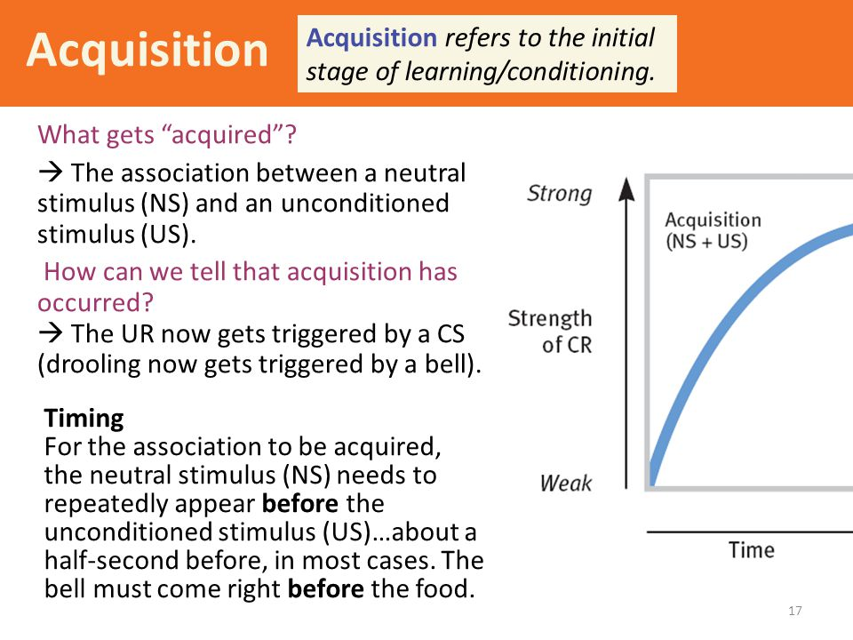 """17 Acquisition What gets """"acquired""""?  The association between a neutral stimulus (NS) and an unconditioned stimulus (US). How can we tell that acquis"""