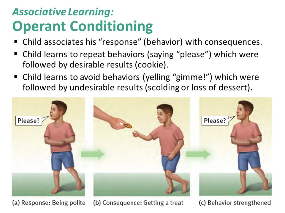 """ Child associates his """"response"""" (behavior) with consequences.  Child learns to repeat behaviors (saying """"please"""") which were followed by desirable"""