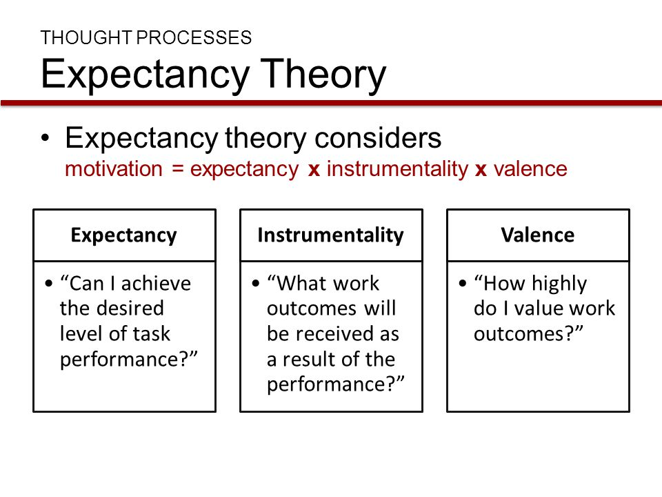 """THOUGHT PROCESSES Expectancy Theory Expectancy theory considers motivation = expectancy x instrumentality x valence Expectancy """"Can I achieve the desi"""