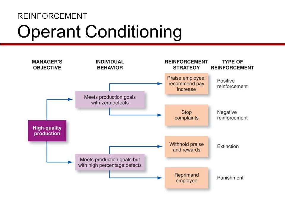 REINFORCEMENT Operant Conditioning