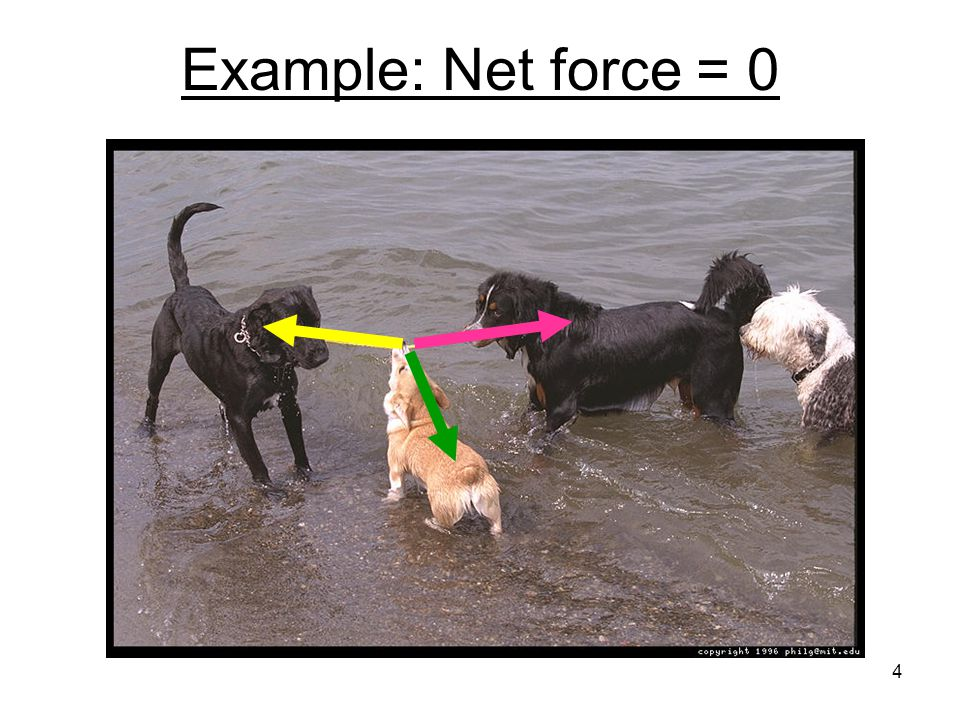 Example: Net force = 0 4