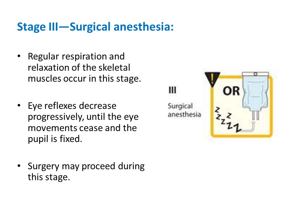 Stage III—Surgical anesthesia: Regular respiration and relaxation of the skeletal muscles occur in this stage.