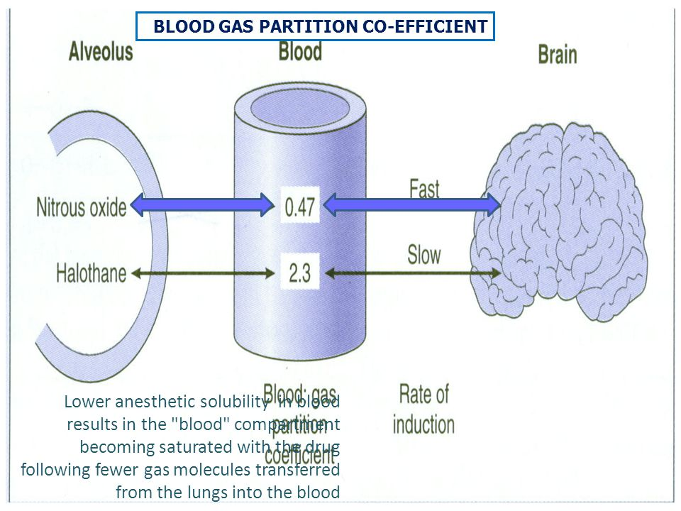 BLOOD GAS PARTITION CO-EFFICIENT Lower anesthetic solubility in blood results in the