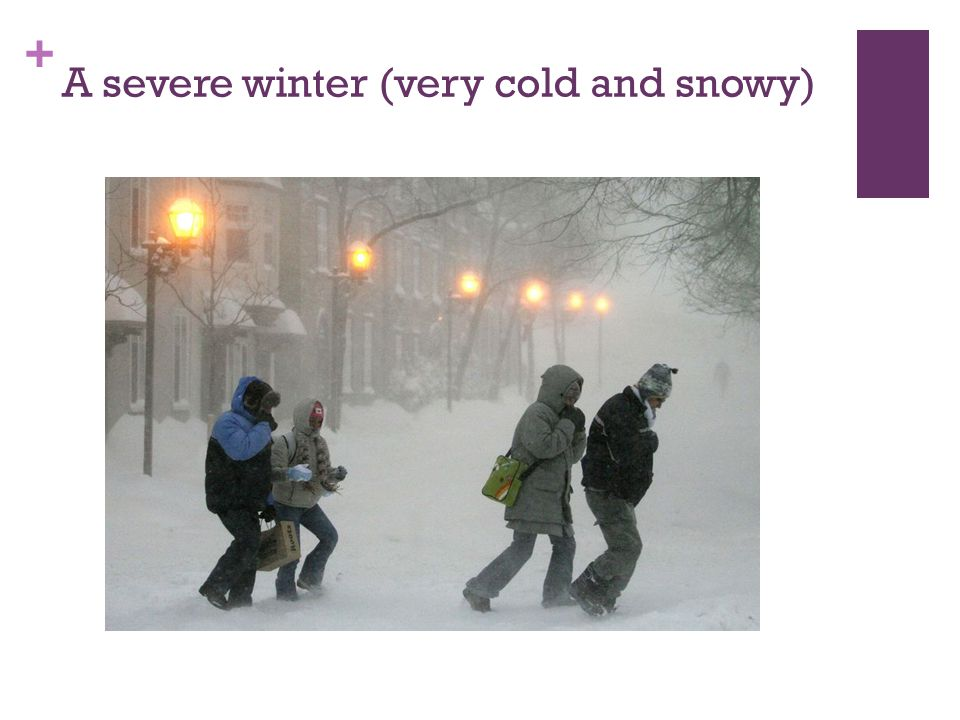 + A severe winter (very cold and snowy)