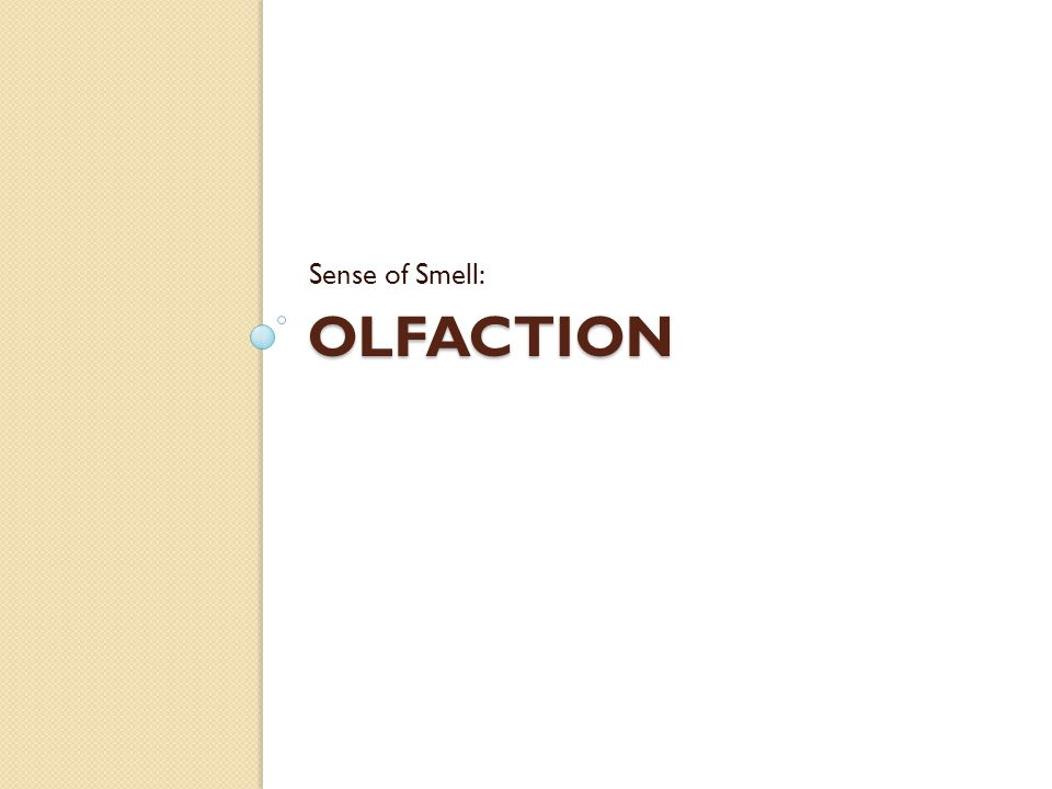 OLFACTION Sense of Smell: