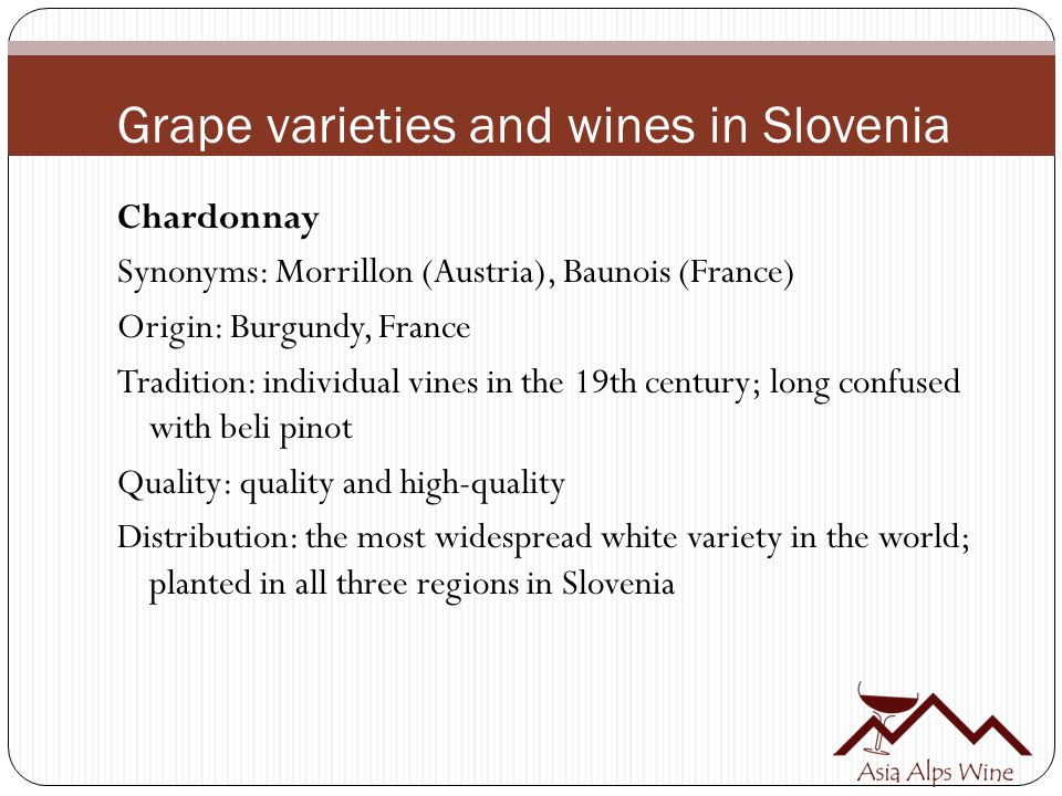 Grape varieties and wines in Slovenia Chardonnay Synonyms: Morrillon (Austria), Baunois (France) Origin: Burgundy, France Tradition: individual vines in the 19th century; long confused with beli pinot Quality: quality and high-quality Distribution: the most widespread white variety in the world; planted in all three regions in Slovenia