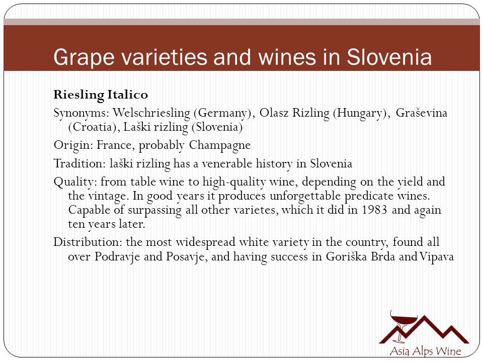 Grape varieties and wines in Slovenia Riesling Italico Synonyms: Welschriesling (Germany), Olasz Rizling (Hungary), Graševina (Croatia), Laški rizling (Slovenia) Origin: France, probably Champagne Tradition: laški rizling has a venerable history in Slovenia Quality: from table wine to high-quality wine, depending on the yield and the vintage.