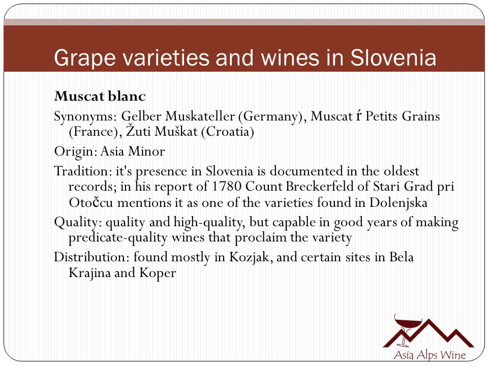 Grape varieties and wines in Slovenia Muscat blanc Synonyms: Gelber Muskateller (Germany), Muscat ŕ Petits Grains (France), Žuti Muškat (Croatia) Origin: Asia Minor Tradition: it s presence in Slovenia is documented in the oldest records; in his report of 1780 Count Breckerfeld of Stari Grad pri Oto č cu mentions it as one of the varieties found in Dolenjska Quality: quality and high-quality, but capable in good years of making predicate-quality wines that proclaim the variety Distribution: found mostly in Kozjak, and certain sites in Bela Krajina and Koper