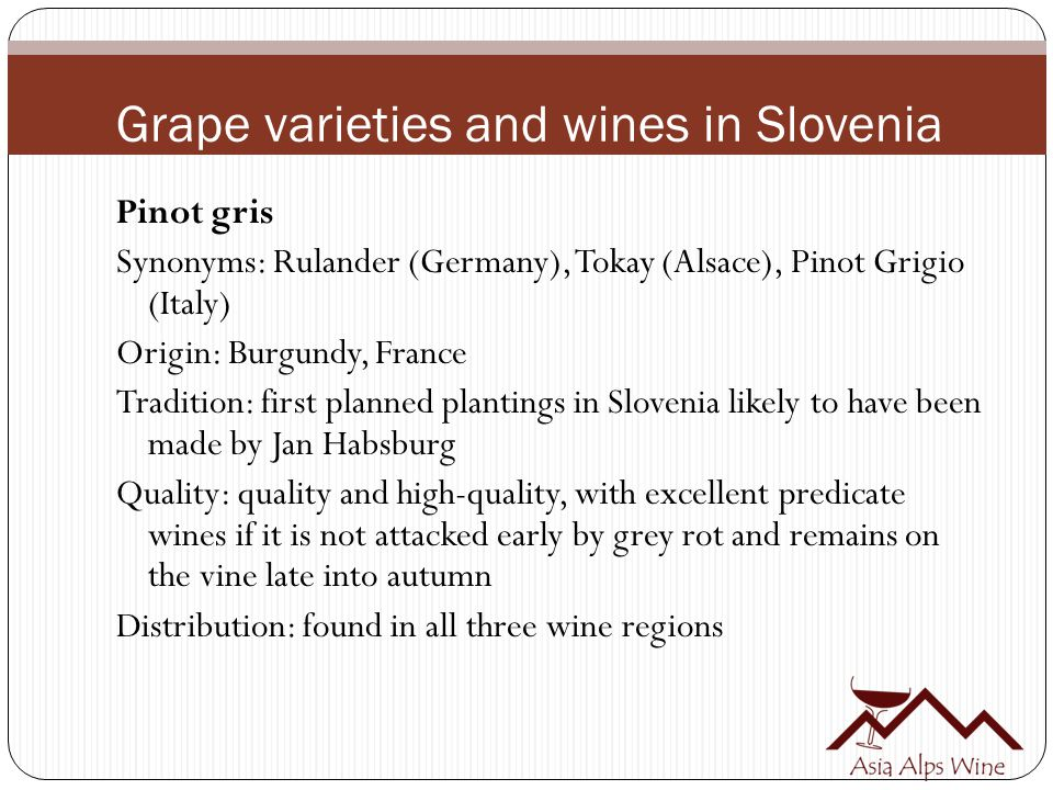 Grape varieties and wines in Slovenia Pinot gris Synonyms: Rulander (Germany), Tokay (Alsace), Pinot Grigio (Italy) Origin: Burgundy, France Tradition: first planned plantings in Slovenia likely to have been made by Jan Habsburg Quality: quality and high-quality, with excellent predicate wines if it is not attacked early by grey rot and remains on the vine late into autumn Distribution: found in all three wine regions