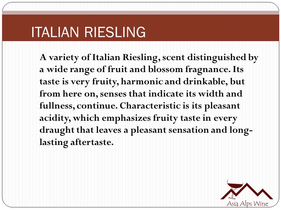 A variety of Italian Riesling, scent distinguished by a wide range of fruit and blossom fragnance.