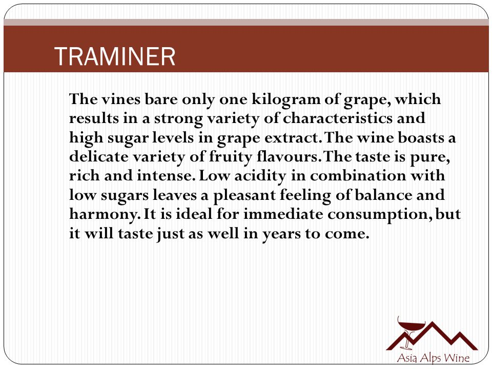 TRAMINER The vines bare only one kilogram of grape, which results in a strong variety of characteristics and high sugar levels in grape extract. The w