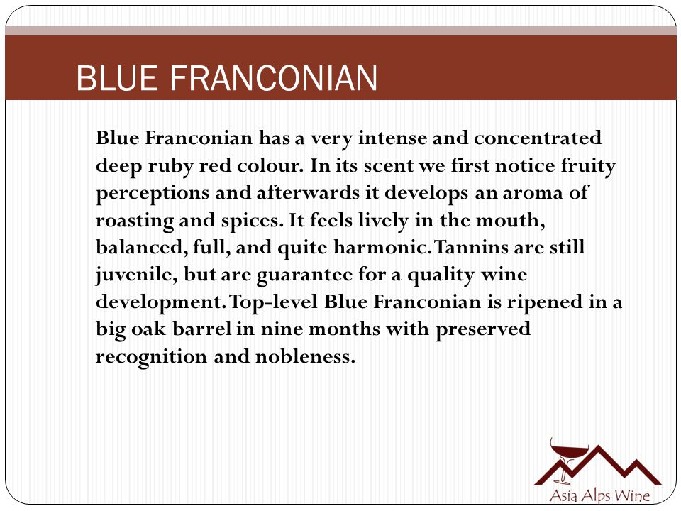 BLUE FRANCONIAN Blue Franconian has a very intense and concentrated deep ruby red colour.