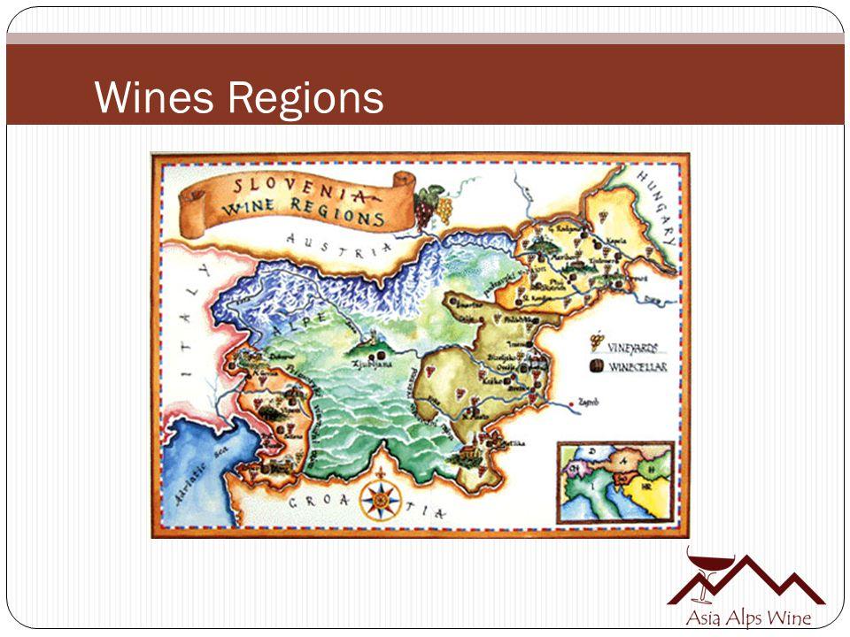 Wines Regions