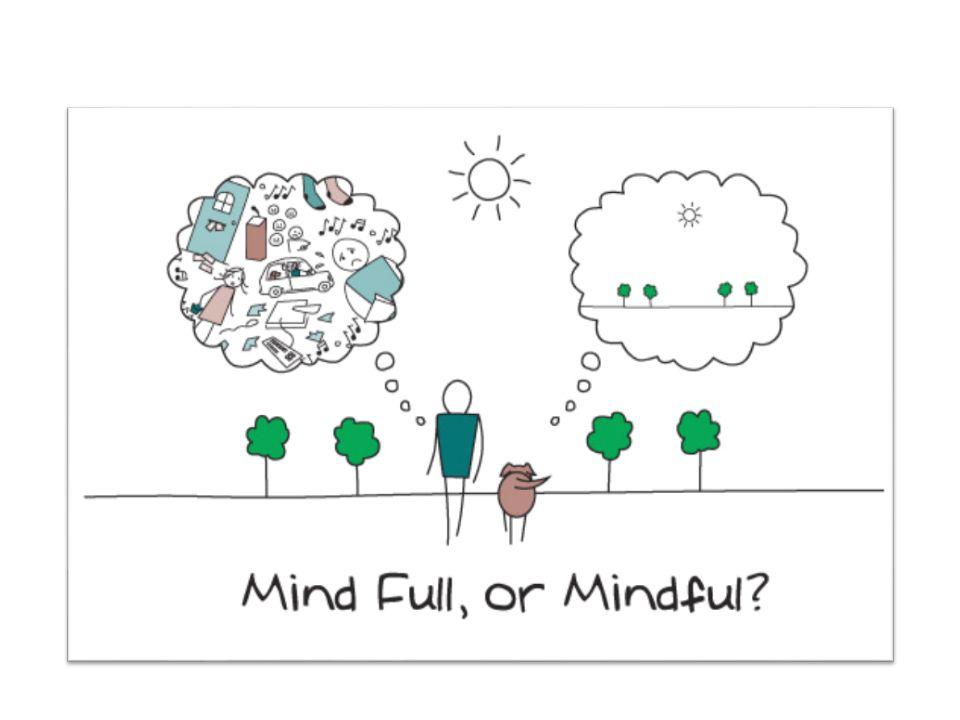 Why Meditation? PRACTICEPRACTICE