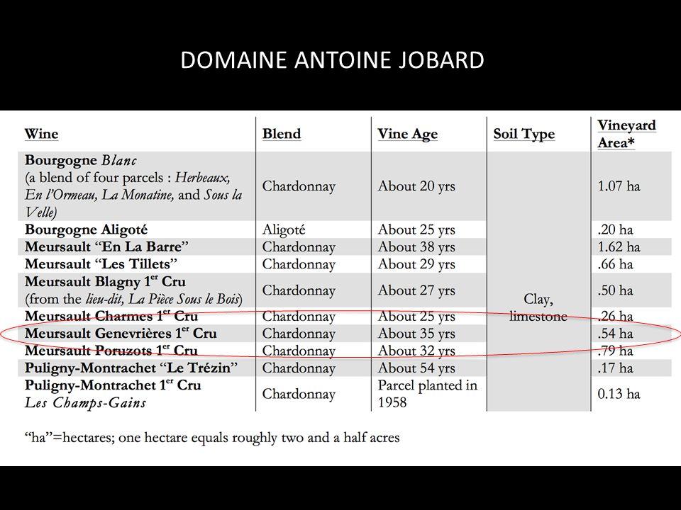 DOMAINE ANTOINE JOBARD