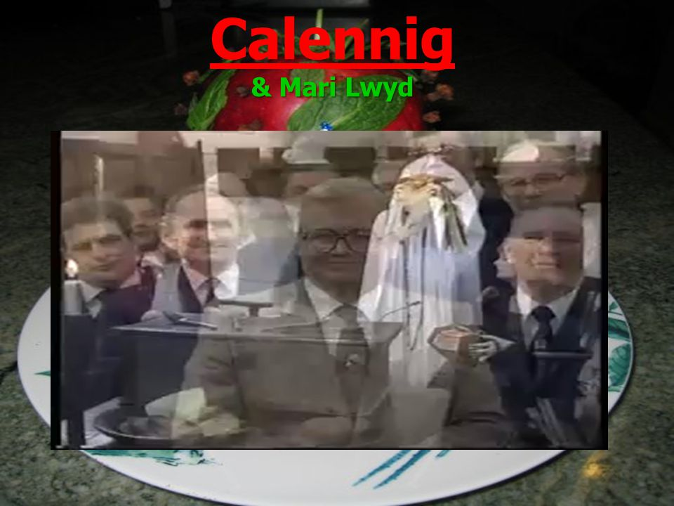 & Mari Lwyd Calennig & Mari Lwyd